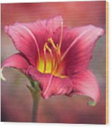Day Lily Deep Wood Print