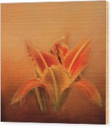 Day Lily Emerging Wood Print