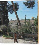 Day Walk In Jerusalem Wood Print