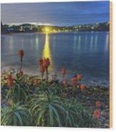Daybreak And Cloudy Seascape And Aloe Vera Wood Print