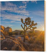 Daybreak At Joshua Wood Print