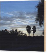 Daybreak In Florida Wood Print