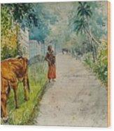Daybreak In Kerala Wood Print