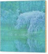 Daydream - Holmdel Park Wood Print