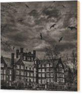 Daydreams Darken Into Nightmares Wood Print