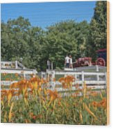 Daylilies And Oxen Wagon Wood Print