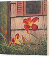 Daylilies At The Shed Wood Print by Elaine Farmer