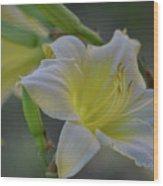 Daylily In Yard Wood Print
