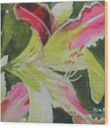 Daylily Study 1 Wood Print