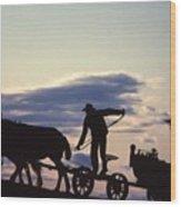 Day's End Amish Farmer Barnhill Wood Print