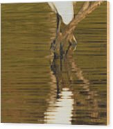 Days End With One Egret Wood Print