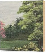 Daytime Color Wood Print