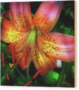 Dazzling Daylily  Wood Print