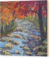 Dazzling View From The Rapidan Wood Print