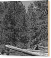 Ddp Djd B And W 1880's Cabin Ruins In Montana 3 Wood Print