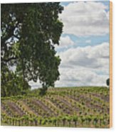 De Vines Wood Print