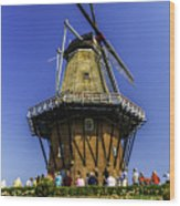 De Zwaan Windmill In Holland Wood Print