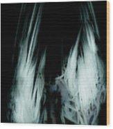 Dead Bird Grey Wood Print