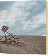 Dead Bush In Sea Sand St Lucia Wood Print