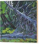 Dead Cedar Wood Print