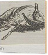Dead Duck, Jacob Elias Van Varelen, After Jacob De Gheyn II, 1821 Wood Print
