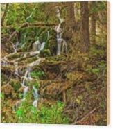 Dead Horse Creek Wood Print