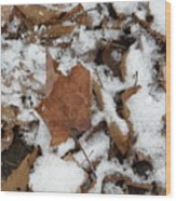 Dead Leaves In The Snow Wood Print