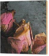 Dead Roses 1 Wood Print