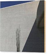 Dead Saguaro Building And Shadows Wood Print