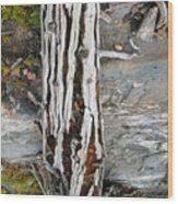 Dead Tree Above Tree Line I Wood Print