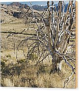 Dead Tree Panorama Wood Print