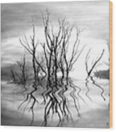 Dead Trees Bw Wood Print