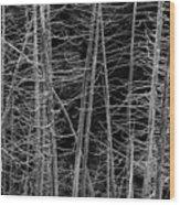 Dead Trees Wood Print
