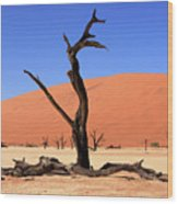 Dead Vlei Tree  Wood Print by Aidan Moran