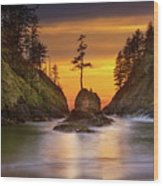 Deadman's Cove At Cape Disappointment State Park Wood Print