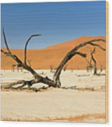 Deadvlei With Tree Wood Print