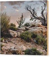 Deadwood Sunset Wood Print