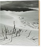 Death Valley Brush Wood Print