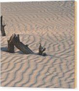 Death Valley Morning Wood Print by Sandra Bronstein