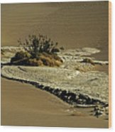 Death Valley Salt Wood Print
