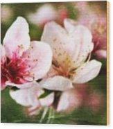 Decadent Spring Delight Wood Print
