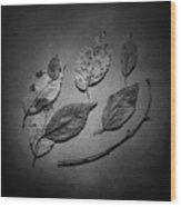 Decaying Leaves Wood Print