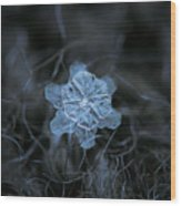 December 18 2015 - Snowflake 2 Wood Print by Alexey Kljatov