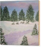 December Afternoon Wood Print