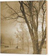 December Glow Wood Print