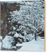 December Snows Wood Print