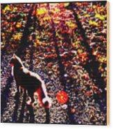 December Walk In The Blue Ridge Wood Print
