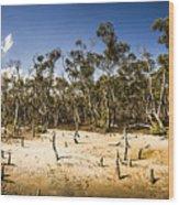 Deception Bay Conservation Park Wood Print