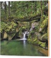 Deception Creek Wood Print