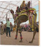 Decorated Camel Pushkar Wood Print
